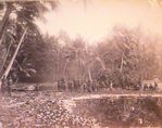 Bush Natives, Pleasant Island