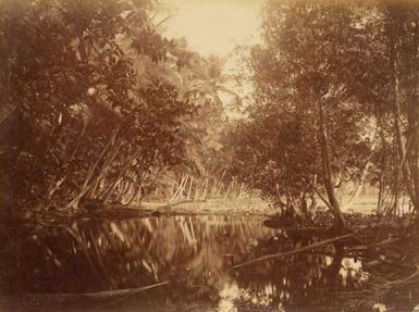 Pleasant Island. From the album: Views in the Pacific Islands