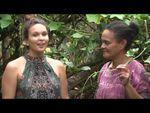 Les tiges de chouchoute - Les feuilles comestibles du Pacifique